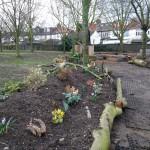 Manor Junior's Eco- Garden